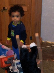 lucian rocking horse pic